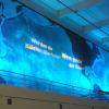 """""""Ozean der Zukunft"""" München 2010"""